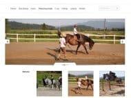 www.jahalna-sola.storitve.biz