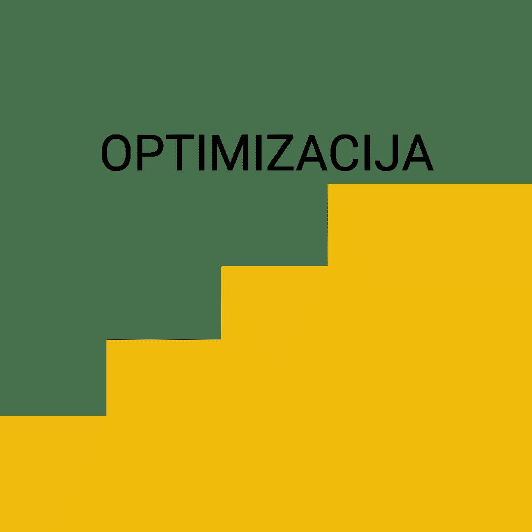 Optimizacija